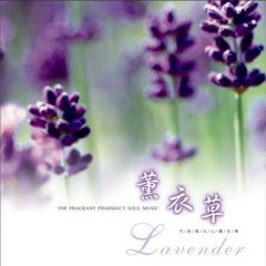 Lavender (薰衣草)