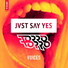 Voices (Single) - JVST SAY YES, Torro Torro