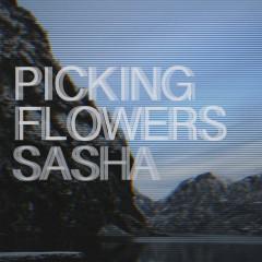 Picking Flowers (Single) - Sasha