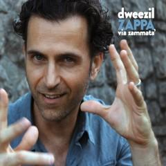 Via Zammata' - Dweezil Zappa