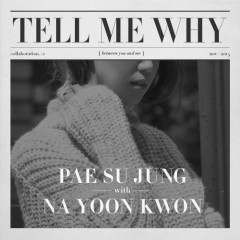 Tell Me Why - Pae Su Jung,Na Yoon Kwon