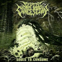 Souls To Consume - Septic Congestion