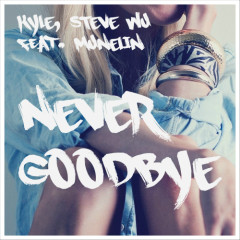 Never Goodbye - Kyle,Steve Wu