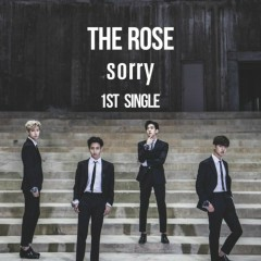 Sorry (The 1st Single)