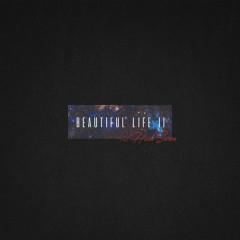 Beautiful Life II