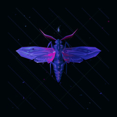 Lying & Loving (Single) - Electric Mantis