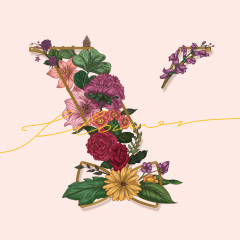 Flower (Single) - VROMANCE