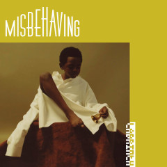 Misbehaving (Single)