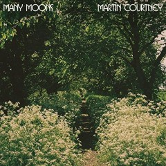 Many Moons - Martin Courtney