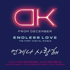 Endless Love  - DK