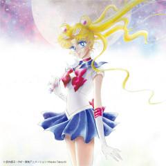 Bishoujo Senshi Sailor Moon The 20th Anniversary Memorial Tribute