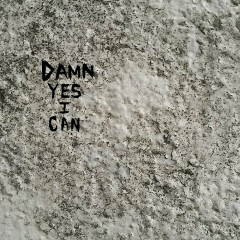Damn Yes I Can (Single)