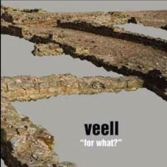 For What - Veell