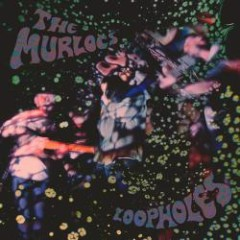 Loopholes - The Murlocs
