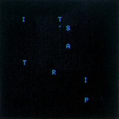It's A Trip! (Single) - Joywave