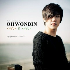 I Love You I Love You - Oh Won Bin