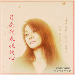 The Moon Represents My Heart (Yue Liang Dai Biao Wo Dexin) (Single) - Park Ju Hee