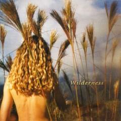 Wilderness - Sophie B. Hawkins