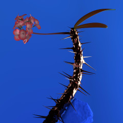 Skin Companion EP II - Flume