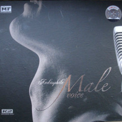 Audiophile Male Voice
