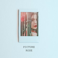Picture (Single) - Rose