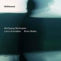 Driftwood - Wolfgang Muthspiel