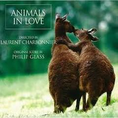 Animals In Love  - Philip Glass