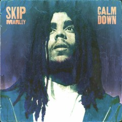 Calm Down (Single)