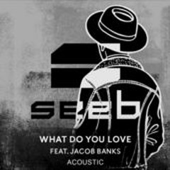 What Do You Love (Acoustic) (Single) - SeeB, Jacob Banks