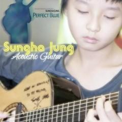 Best Of Sungha's Guitar 2011