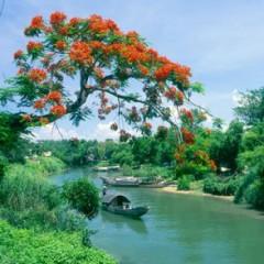 Chung Một Dòng Sông