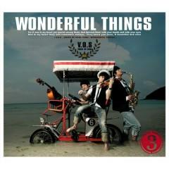 Wonderful Things (3rd Album) - V.O.S