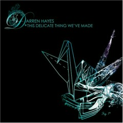 This Delicate Thing We've Made (CD2) - Darren Hayes