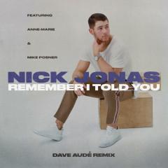 Remember I Told You (Dave Audé Remix) (Single) - Nick Jonas