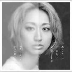 Anata Ni Aenaku Naru Hi Made / You Are Beautiful - Ms.OOJA