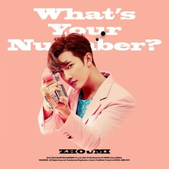 What's Your Number? (The 2nd Mini Album)