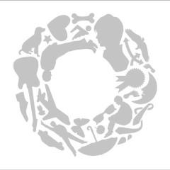 互 (Go) - Kenichi Suzumura