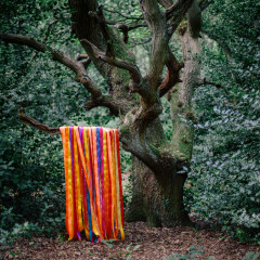 The Animal Spirits - James Holden, The Animal Spirits