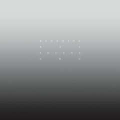 Solens Arc - Kangding Ray