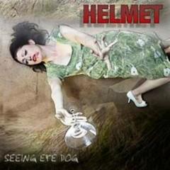 Seeing Eye Dog - Helmet