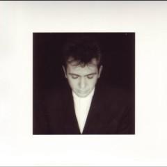 Shaking the Tree Sixteen Golden Greats - Peter Gabriel