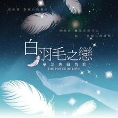 The Power Of Love - Tuyển Tập Tình Ca Hoa Ngữ (CD2)