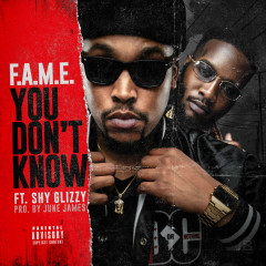 You Don't Know (Single)