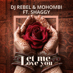 Let Me Love You (Single)