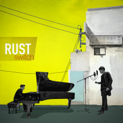 Switch (Single) - Rust