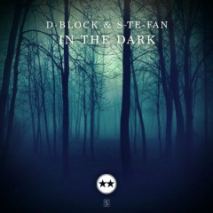 In The Dark (Single)