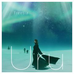Freesia - Uru