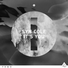 It's You (Single) - Syn Cole
