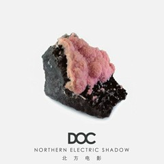 Northern Electric Shadow