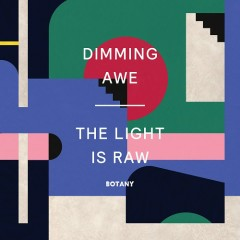 Dimming Awe, The Light Is Raw - Botany